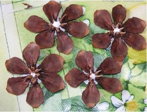 Цветок из шишек фото