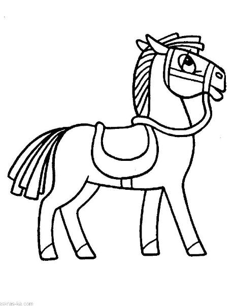Раскраска лошадок картинки